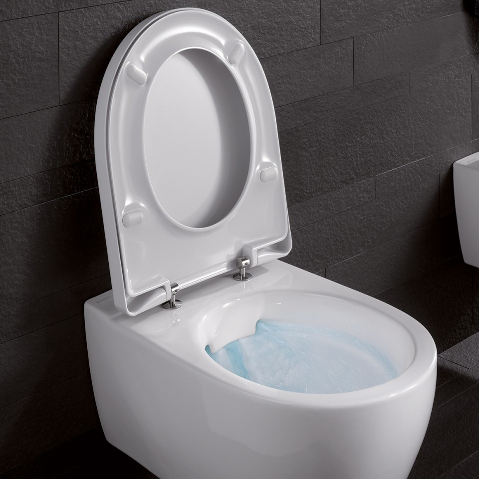 Geberit Renova WC spülrandlos offen