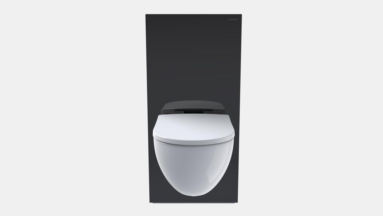 Geberit Monolith Sanitärmodul, Höhe 101 cm, schwarz
