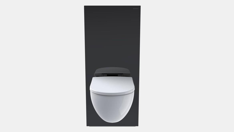 Geberit Monolith Sanitärmodul, Höhe 114 cm, schwarz